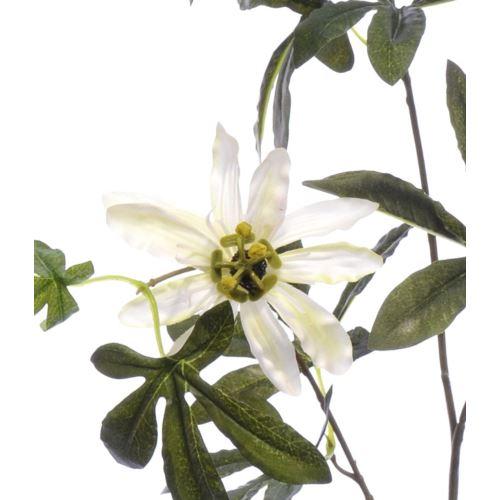 Passiflora 90cm aj68172 cream