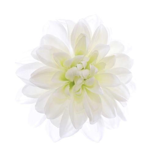 Dahlia dalia head zq011 14cm cream green