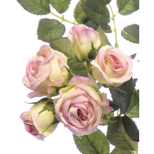 Gałązka różyczki SUN598 GREEN DIRTY PINK