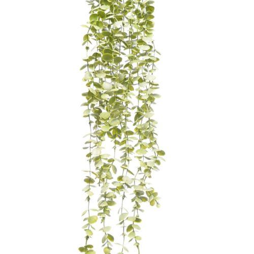 GAŁĄZKA ZWIS EUKALIPTUS X5 75cm LT GREEN
