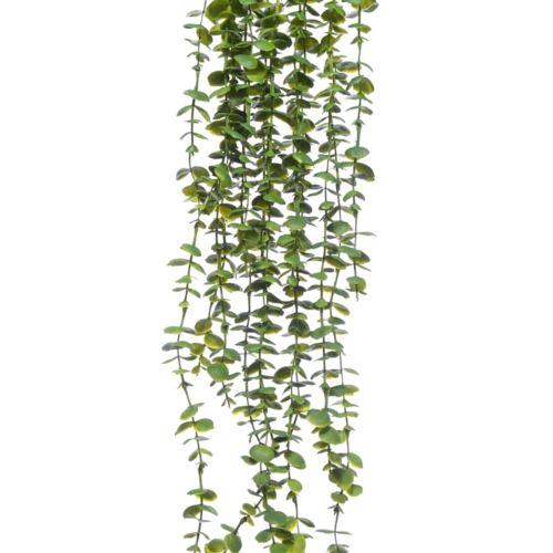 GAŁĄZKA ZWIS EUKALIPTUS X5 75cm GREEN