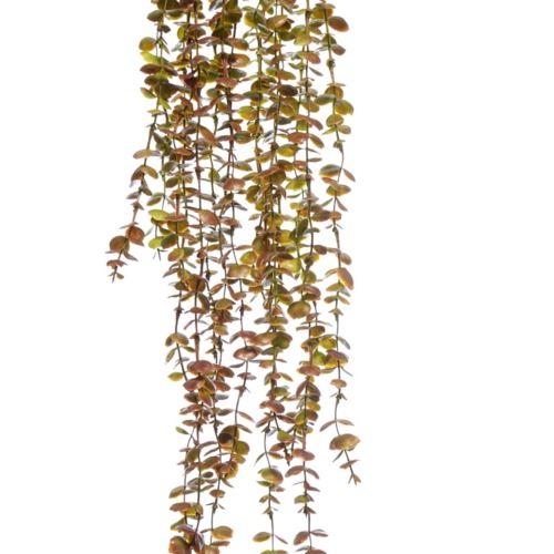 GAŁĄZKA ZWIS EUKALIPTUS X5 75cm GREEN BURGUNDY
