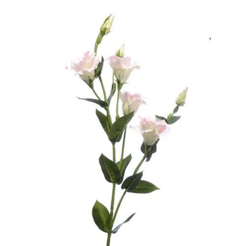 Eustoma gałązka 83cm sun345 cream edge pink