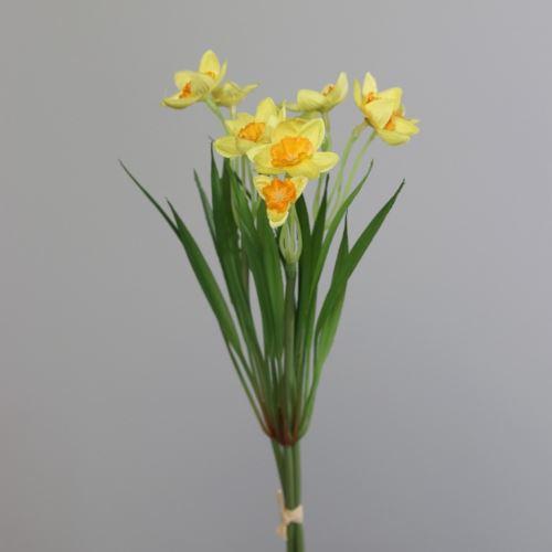 Żonkil - narcyz Daffodils x3 26 cm yellow-orange