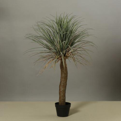 Yucca palm in black pot 96 cm
