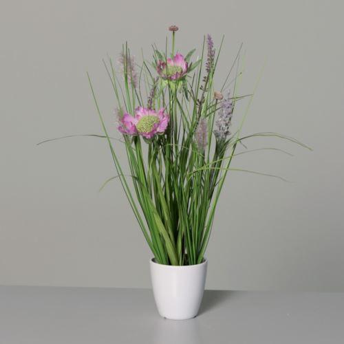 Łąka trawa w doniczce  34 cm pink