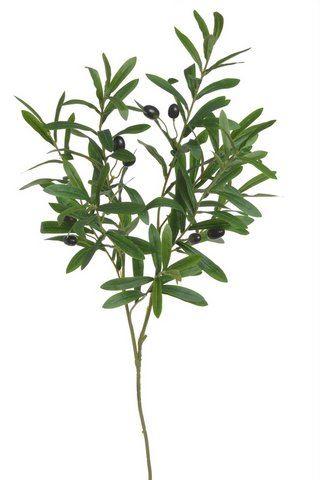 Gałązka oliwna oliwka z owocami 95cm green