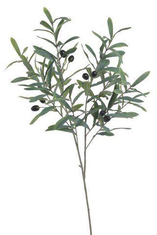 Gałązka oliwna oliwka z owocami  95cm