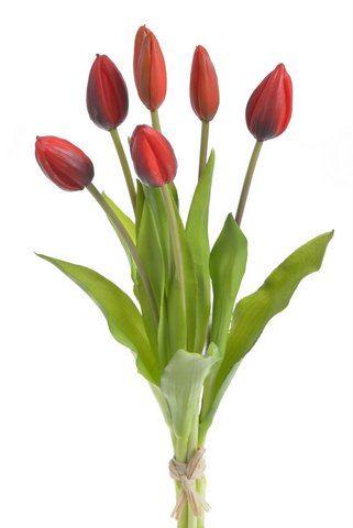 Tulipan 40cm x7 -sztucz.rosl