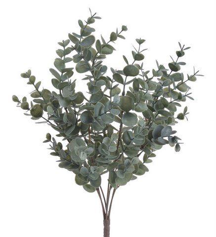 Eukaliptus x7 -sztucz.rosl.