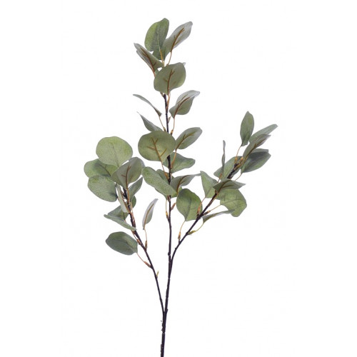 EUKALIPTUS GAŁĄZKA 70cm Green