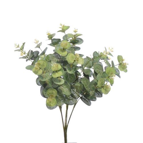 Bukiet eukaliptusa x20 liu007 48cm green