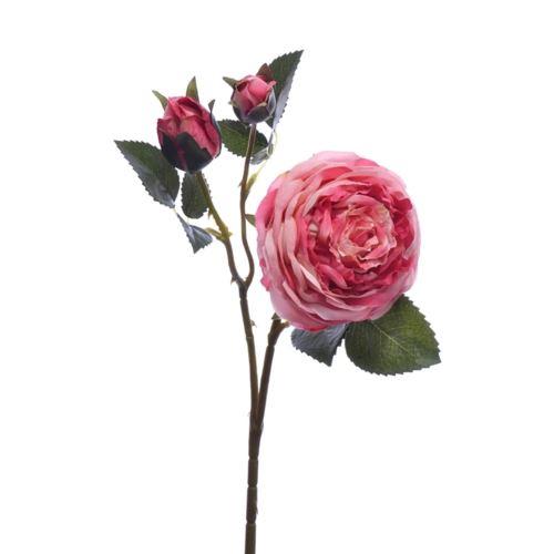 Róża peoniowa Ascot 58cm 3 pink lt pink ZB025