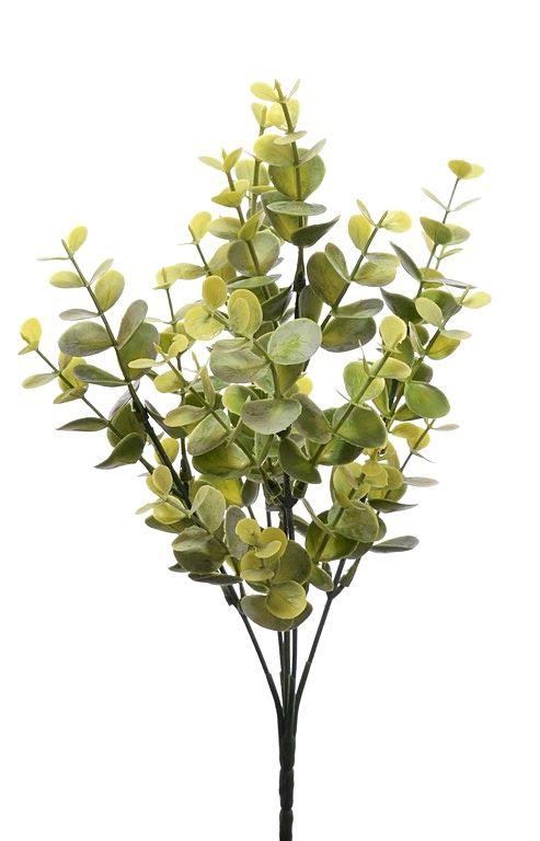 Galązka eukaliptusa zielona omszona 32cm