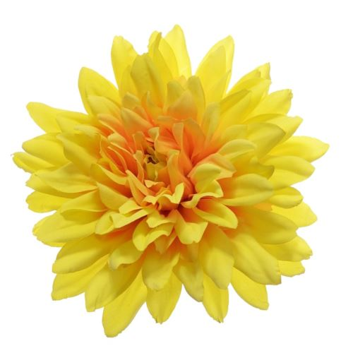 Dalia główka 15cm HPG6258 Yellow