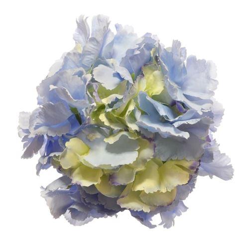Hortensja główka 18cm lt blue green
