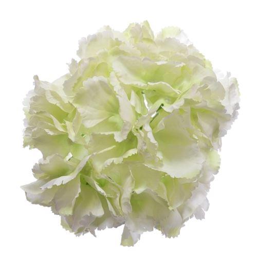 Hortensja główka 18cm lt green