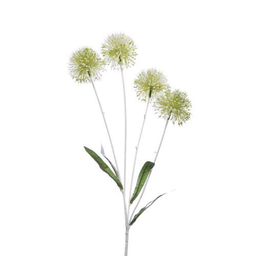 Czosnek allium x4 gałązka 60cm cv14338 white green
