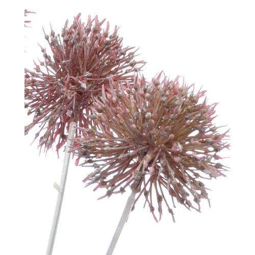 Czosnek allium x4 gałązka 60cm cv14338 pink