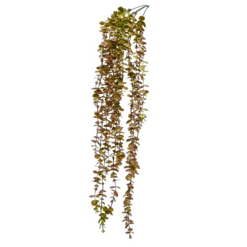 GAŁĄZKA ZWIS EUKALIPTUS X5 75cm BURGUNDY GREEN