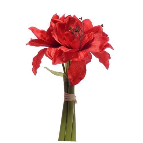 Amarylis x3 pęczek 30cm cv14528 red
