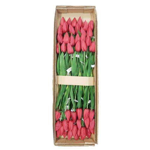 Tulipan poj. 56cm /1164 48szt/karton RED