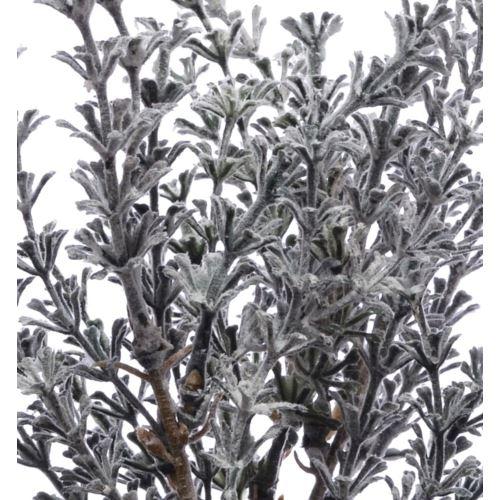Zioła lawenda szara pęczek 22cm 54458 gray