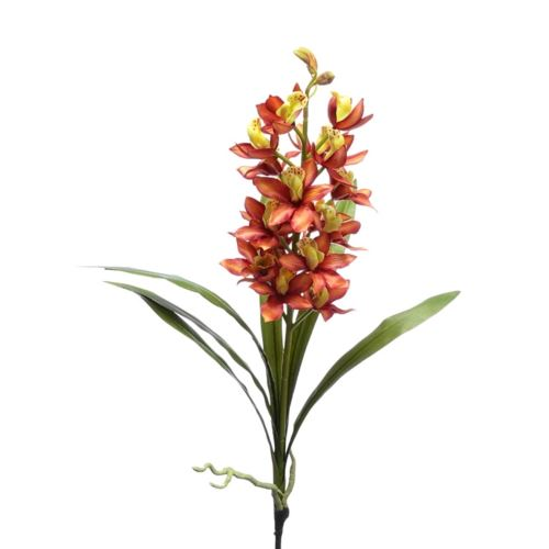Storczyk mini cymbidium 55cm sun353-P orange coffe