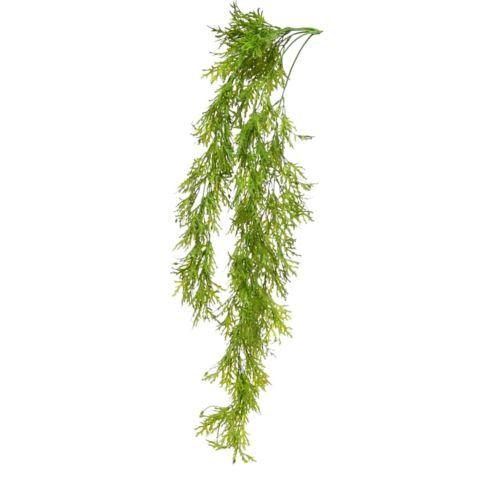 Geranium zwisajace 82cm green