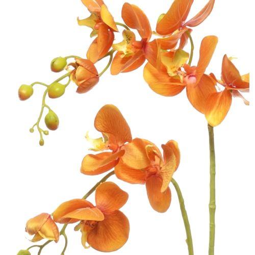 Storczyk x2 z liściem 89cm sun321 orange