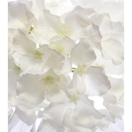 Hortensja główka 15cm sun644 pearl white
