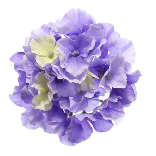 Hortensja główka 15cm sun644 lt. violet