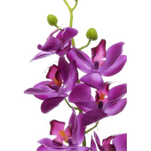 Storczyk guma 85cm Aj45598 dk. purple