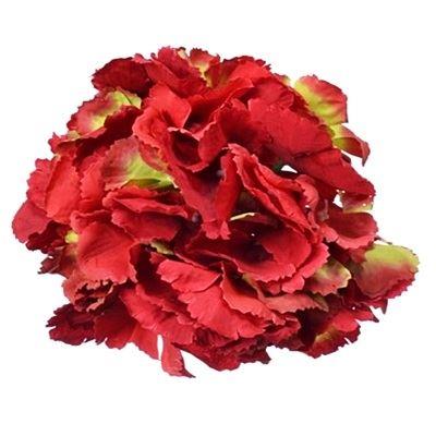 Hortensja główka 18cm red green
