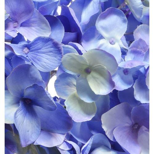 Hortensja głowa 18cm sun682 blue violet