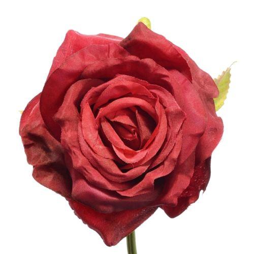 Róża głowa 10cm ly003 25l (beauty red)