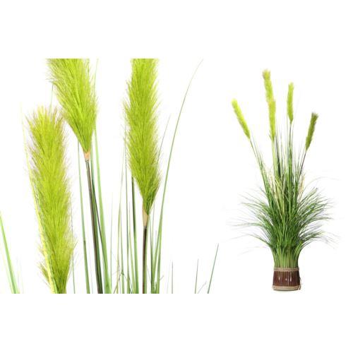 Trawa dekoracyjna w pęczku Pennisetum 130 cm Green