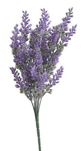 Lawenda bukiet x7 35cm Purple lavender
