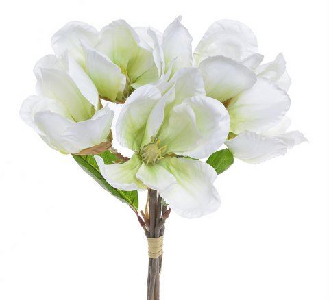 Magnolia 31cm 5szt/pecz. white green