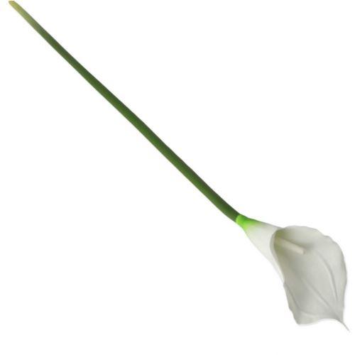 CALLA POJ. GUMA 71cm / 0312 White