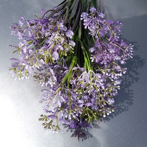 RZEŻUCHA ŁĄKOWA 62cm violet