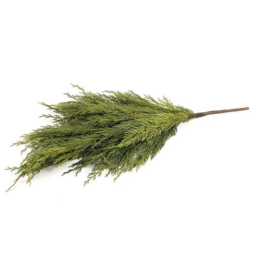 Gałązka tuja naturalna dotyku 65cm green