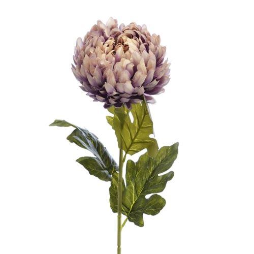 Chryzantema na łodydze75cm old violet