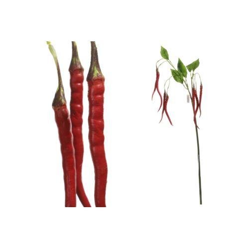 Capsicum gałązka 105 cm red