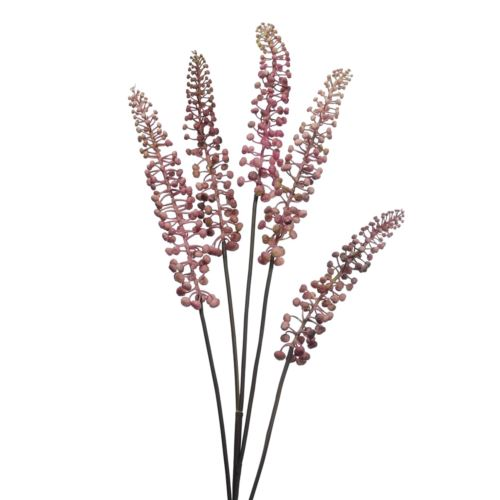 Phytolacca pink 93cm