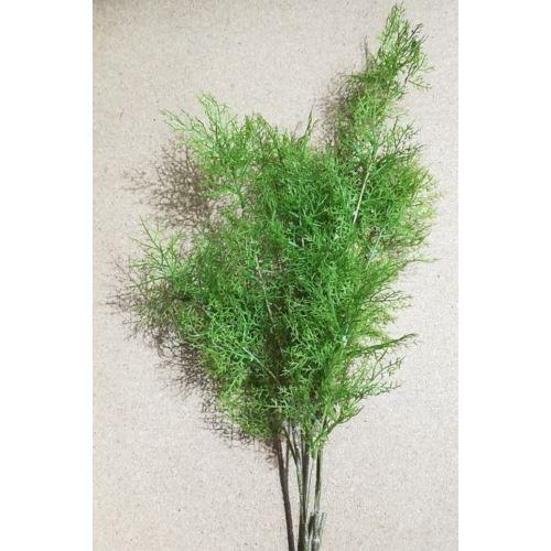 GAŁAZKA XHT6130 green