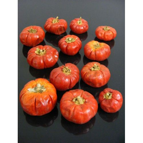 MINI PAMPKIN DYNIA 100G Z-18