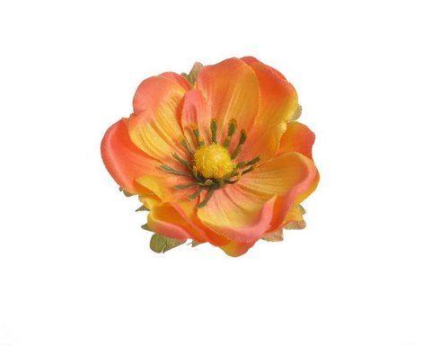 Anemon glowka 6cm 12szt/pacz. orange