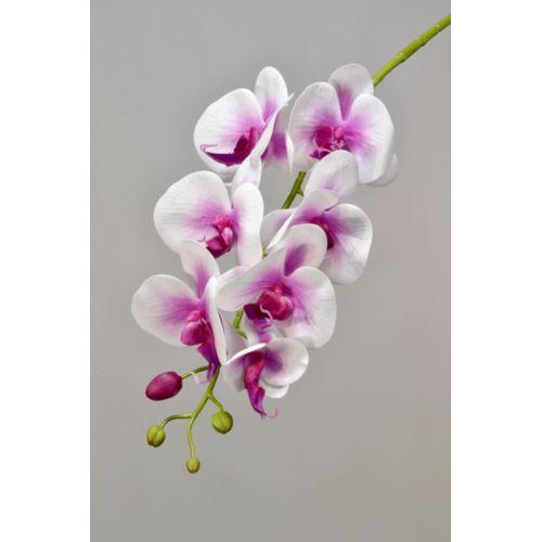 Storczyk - gałązka gumowana 75 cm cream pink