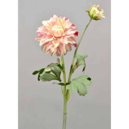 Dalia gumowa - gałązka 61 cm cream pink